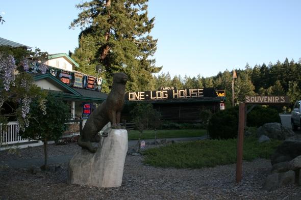 one-log house